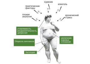 Как снизить мужской гормон в женском организме народными средствами