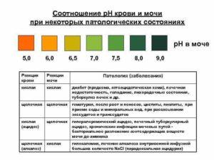 Ph в моче у беременных норма