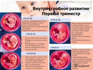 Когда начинаешь чувствовать шевеление ребенка при первой беременности