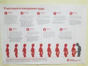 22 Недели Беременности Сколько Это В Месяцах