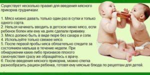 С какого возраста можно давать ребенку свинину комаровский