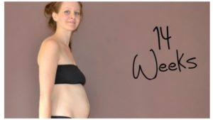 Живот на 14 неделе беременности