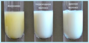 Вкус грудного молока при беременности