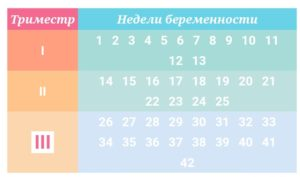 Во Сколько Недель Начинается Третий Триместр Беременности