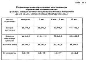 Ширина задних рогов боковых желудочков норма у плода таблица по неделям