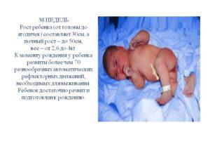 38 неделя беременности рост и вес ребенка