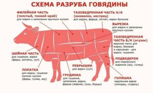 Мясо Для Гуляша Из Говядины Какая Часть