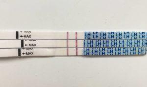 Тест на беременность на 11 день после зачатия