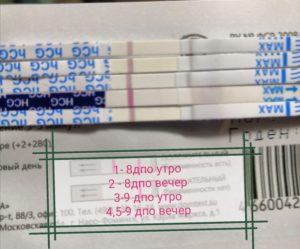 На 9 день после овуляции покажет ли тест беременность