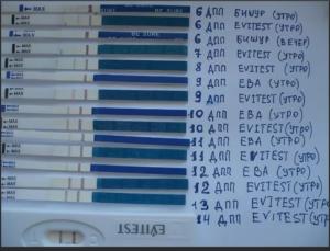 Когда можно делать тест на беременность после эко