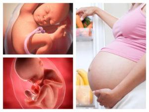 35 Неделя беременности икает