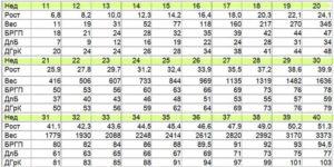Размеры плода на 32 неделе беременности таблица