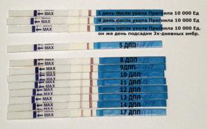 12 день после переноса эмбрионов тест отрицательный это пролет
