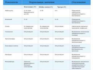 Почему В Мазке Много Лейкоцитов При Беременности