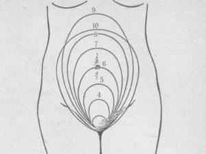Высоко расположена матка при беременности