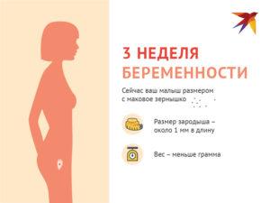 Беременность 6 7 недель развитие плода и ощущения