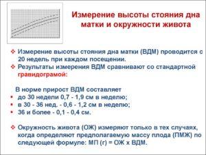 Как измерять высоту дна матки при беременности