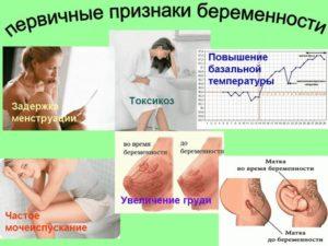 Как Болит Грудь При Первых Признаках Беременности