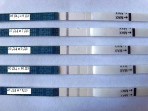 Первый день задержки тест отрицательный может ли быть беременность