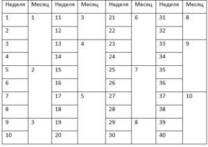 21 неделя это сколько месяцев беременности таблица