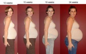 Фото животов 12 недель двойня