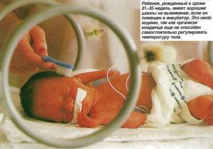Фото ребенка на 35 неделе