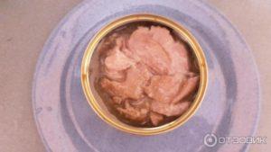 Можно ли кормящей маме консервированный тунец