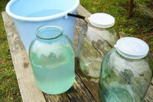 Можно ли при грудном вскармливании пить березовый сок