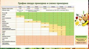 Воз официальный сайт на русском прикорм таблица