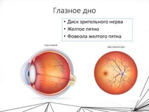 Проверка глазного дна при беременности