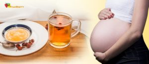 Шиповник При Беременности На Ранних Сроках Беременности