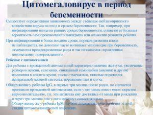 Форум Цитомегаловирус При Беременности Последствия Для Плода