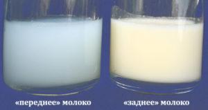 Может ли грудное молоко быть не питательным и сытным