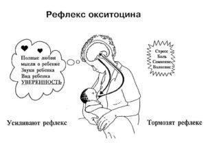 Как окситоцин влияет на ребенка
