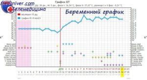 Базальная температура на 6 неделе беременности