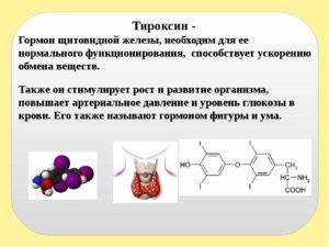 Гормон тироксин на что влияет