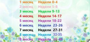 30 31 Неделя Беременности Сколько Это Месяцев