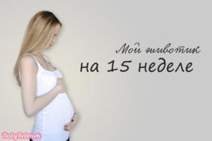 15 Неделя беременности форум мам