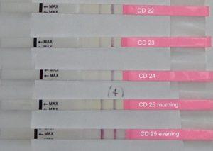 25 день цикла тест на беременность отрицательный