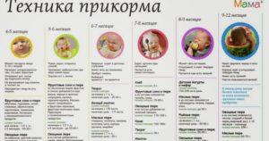 Как правильно вводить прикорм в 6 месяцев таблица комаровский