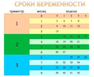 35 Неделя беременности сколько это месяцев таблица