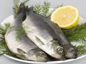 Можно ли кормящей маме есть соленую селедку