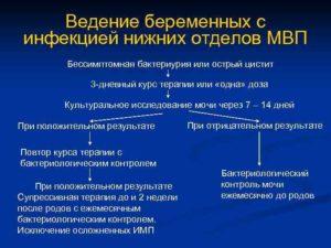 Инфекция мочевыводящих путей у беременных