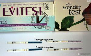 Если еще нет задержки покажет ли тест беременность