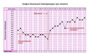 Может ли быть температура тела при зачатии