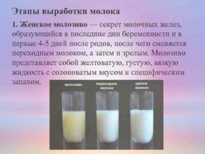 Нет молозива после родов будет ли молоко