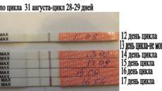 28 день цикла признаки беременности при 28 дневном цикле форум