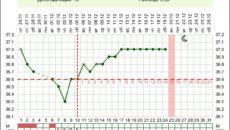 Беременность 37 недель температура 37