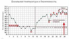 Повышение температуры тела на ранних сроках беременности до задержки
