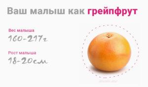 Вес на 18 неделе беременности